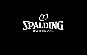 ブランドSPALDINGのロゴ画像